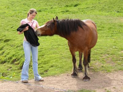 Hanka s koněm